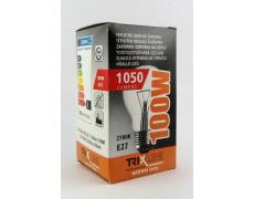 Speciální žárovka BC 100W E27 teplá bílá
